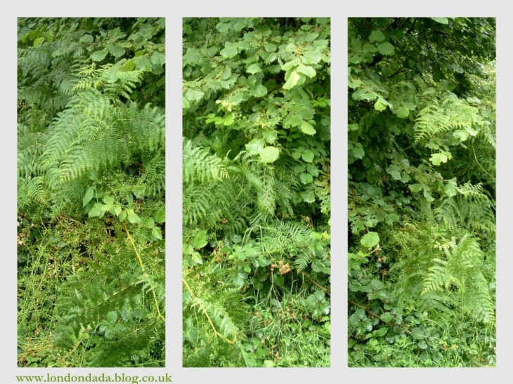 An English Summer Triptych ( green chillout zone)